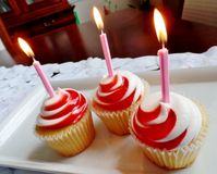 Cupcakes with candles Royalty Free Stock Images