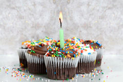 Cupcakes Celebrate Royalty Free Stock Photos