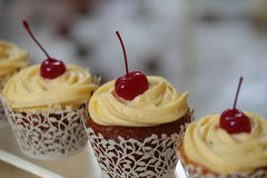 Cupcakes with cherry Stock Photography