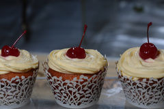 Cupcakes with cherry Royalty Free Stock Photos