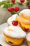 Cupcakes with a cherry Royalty Free Stock Photo