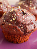 Cupcakes with chocolate frosting Royalty Free Stock Photo