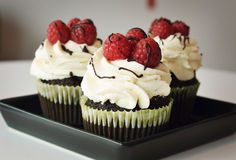Cupcakes. Chocolate cupcakes whipped cream and raspberry royalty free stock photo