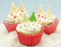 Cupcakes. Christmas cupcakes decorated with buttercream Stock Image