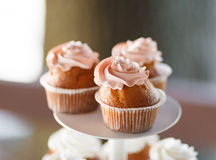 Cupcakes closeup at the banquet table Stock Photo