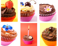 Cupcakes collage. Collage of various cupcakes: vanilla, chocolate, strawberry in decorative cups Royalty Free Stock Photography