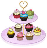 Cupcakes in the cupcake tray Royalty Free Stock Photography