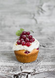 Cupcakes with curd cream and red currants Stock Photo