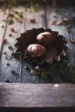 Cupcakes on a dark wooden background with rose branches. royalty free stock photography