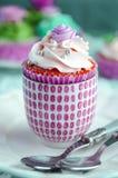 Cupcakes decorated Stock Photos