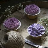 Cupcakes decorated with cream flowers stock images