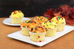 Cupcakes decorated for fall Royalty Free Stock Image