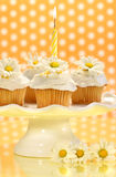 Cupcakes decorated with icing and little daisies Stock Photo