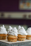 Cupcakes decorated with  meringues frosting Stock Photography