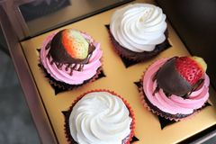 Cupcakes in a delivery box. royalty free stock photography