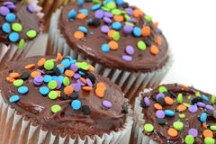 Cupcakes Dessert. Chocolate cupcakes with color sprinkles Royalty Free Stock Images