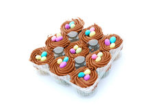 Cupcakes for Easter Stock Images