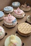 Cupcakes in een doos Stock Afbeeldingen