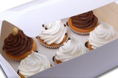 Cupcakes in een leveringsdoos Stock Fotografie