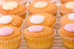 Cupcakes with fondant topping on a cooling rack. Royalty Free Stock Photo