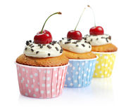 Cupcakes  with fresh cherry. Cupcakes with whipped cream and cherry isolated on white background Royalty Free Stock Images