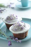 Cupcakes with frosting Royalty Free Stock Images