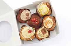 Cupcakes geplet in een doos Stock Fotografie