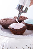 Cupcakes icing. A fresh and tasty  Cupcakes icing Royalty Free Stock Photography