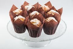 Cupcakes in individual paper packaging. Cupcakes with sugar powder in individual paper packaging stock photos