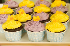 Cupcakes. A large variety of colorful decorated cupcakes Royalty Free Stock Image