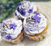 Cupcakes with lavender Royalty Free Stock Image