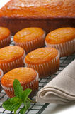 Cupcakes and Lemon Loaf Stock Image