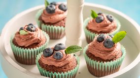 Cupcakes made of chocolate cream and berries. On blue table royalty free stock photos
