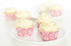 Cupcakes. Stock Image