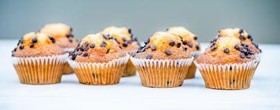 Cupcakes met chocolade royalty-vrije stock afbeelding