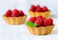 Cupcakes met frambozen Royalty-vrije Stock Afbeeldingen