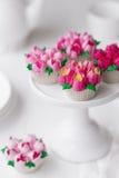 Cupcakes met Russische leidingenuiteinden dat wordt berijpt Royalty-vrije Stock Foto