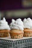 Cupcakes met schuimgebakjes wordt verfraaid dat Royalty-vrije Stock Afbeeldingen