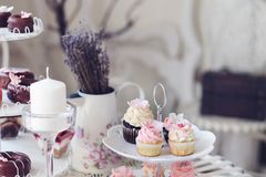 Cupcakes and mini cupcakes Stock Images