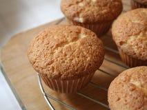 cupcakes muffin καλώδιο ραφιών Στοκ Φωτογραφίες