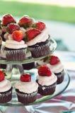 Cupcakes op Schotels Royalty-vrije Stock Afbeelding