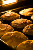 Cupcakes in the oven Stock Photo