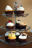 Cupcakes Party Tray Stock Photography