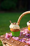 Cupcakes picnic Stock Photography