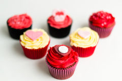 Cupcakes. Picture of cupcakes made into a cupcake bouquet Royalty Free Stock Image