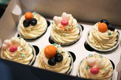 Cupcakes of 6 pieces in a white open box. glaze cake. jewelry from fruit and sweet hearts royalty free stock photo