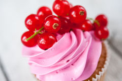 Cupcakes with pink cream and red currant Stock Images