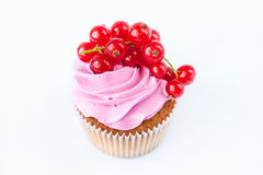 Cupcakes with pink cream and red currant Stock Photos