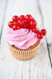 Cupcakes with pink cream and red currant Stock Image
