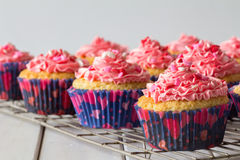 Cupcakes and Pink Frosting on Baking Rack Royalty Free Stock Image